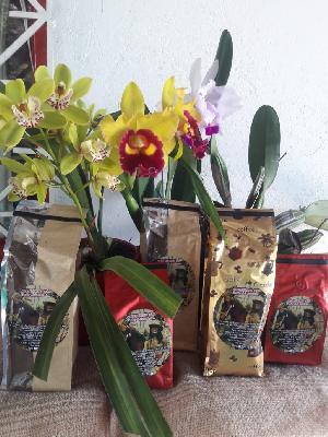 cafe tostado variedades geisha, castillo