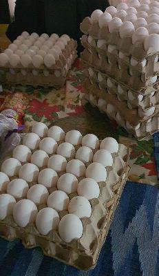 Venta de canasta de huevos x 30 und