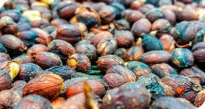 Cafe Cereza Seca Proceso Natural El Renacer Tradicional a Granel (Kg)