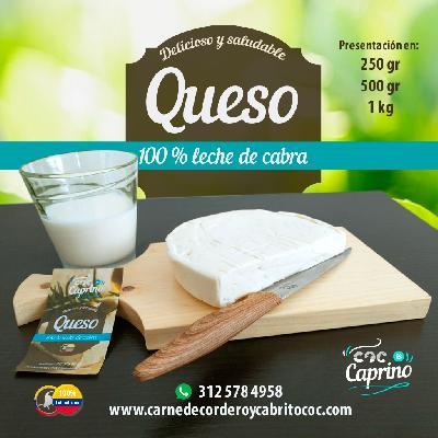 QUESO DE CABRA 100%