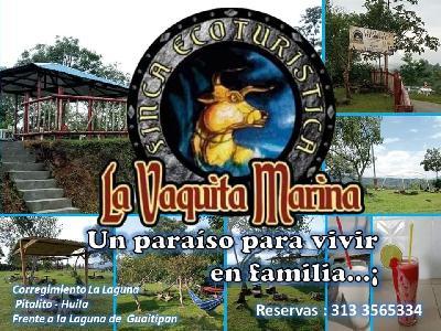 Servicio de turismo local, alojamiento rural y restaurante