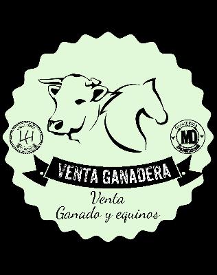 @ventaganadera