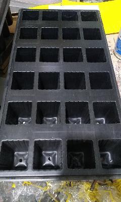 Germinadores semilleros bandejas para forraje verde hidroponico FVH