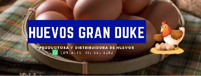 Huevo Comercial